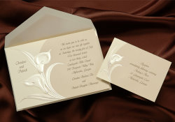 online wedding invitations, shopping tips and wedding invitation ideas, Wedding invitations