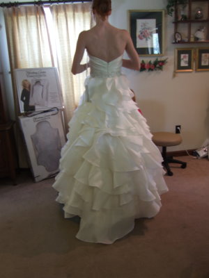 French Bustle Pictures And Wedding Dress Tips